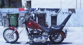 Old School Rigid | Motorcycle