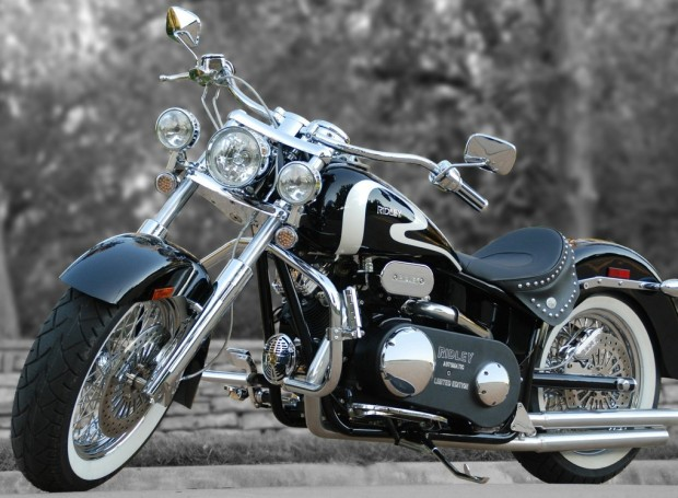 Custom Beauty | Motorbike