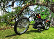 Arched Chopper