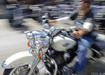 White Harley Bobber