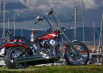 One Stunning Chopper