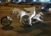 Ride The White Pony