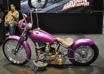 Pretty in Pink Chopper