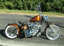 Bronze Chopper