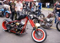 Spider's Web | Best Motorcycles