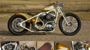 Twisted Choppers Build | Types of Motorcycles