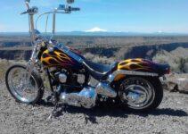 Brian's Springer | Best Motorcycles