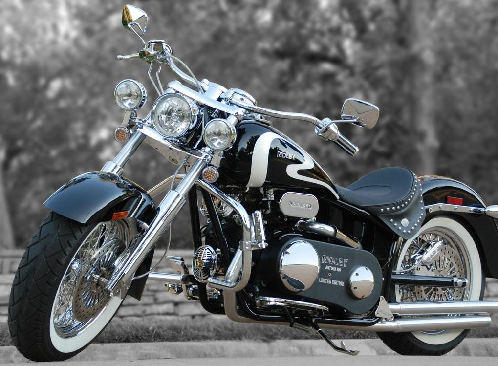 Custom Beauty   Motorbike